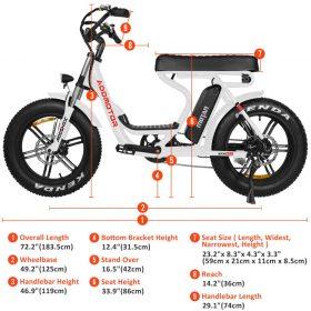 Motan M-66 R7 Step-Thru Electric Fat Bike specs